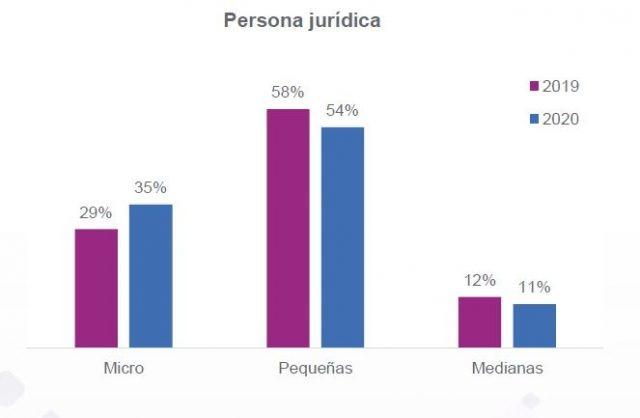 participación de microempresas en el grupo de persona jurídica,