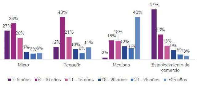 Operaciones crediticias por edad y segmento de la empresa (2019 2020)